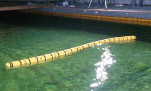 Sea snake testing in a basin